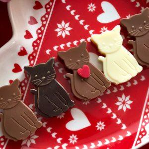 valentýnské kočičky